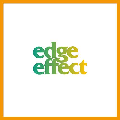 EDGE EFFECT边缘效应